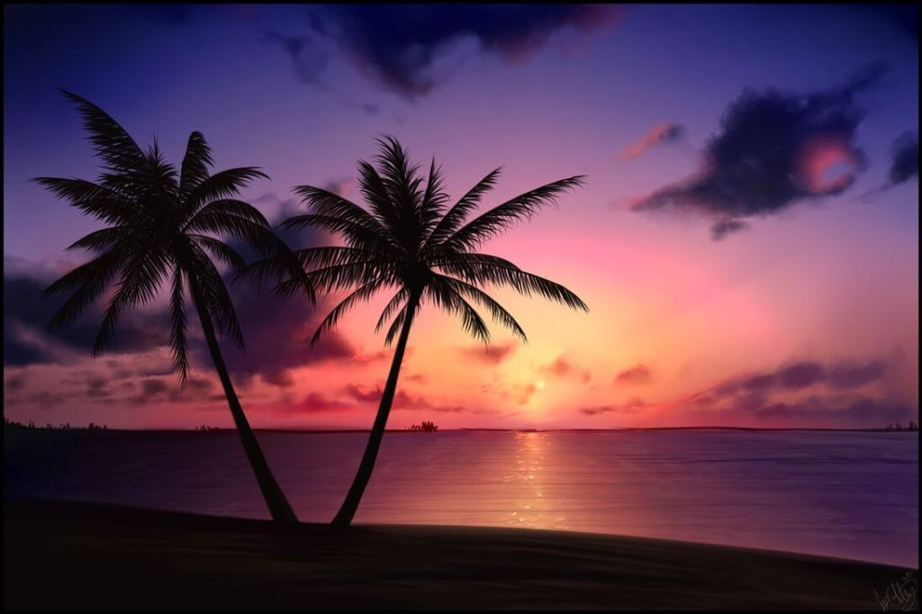Dessin d'une plage avec deux palmiers à contre-jour dans le soleil couchant.