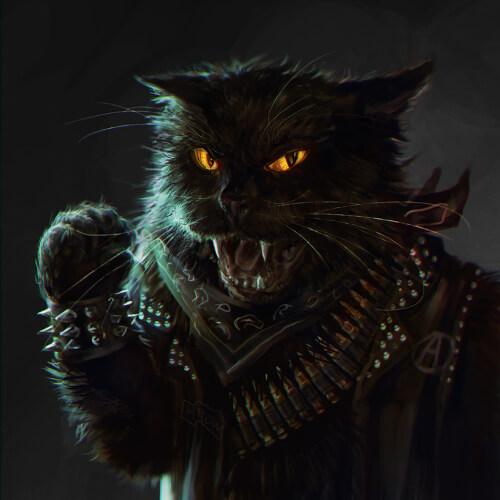Un chat noir arborant un cuir et le A de Anarchie.